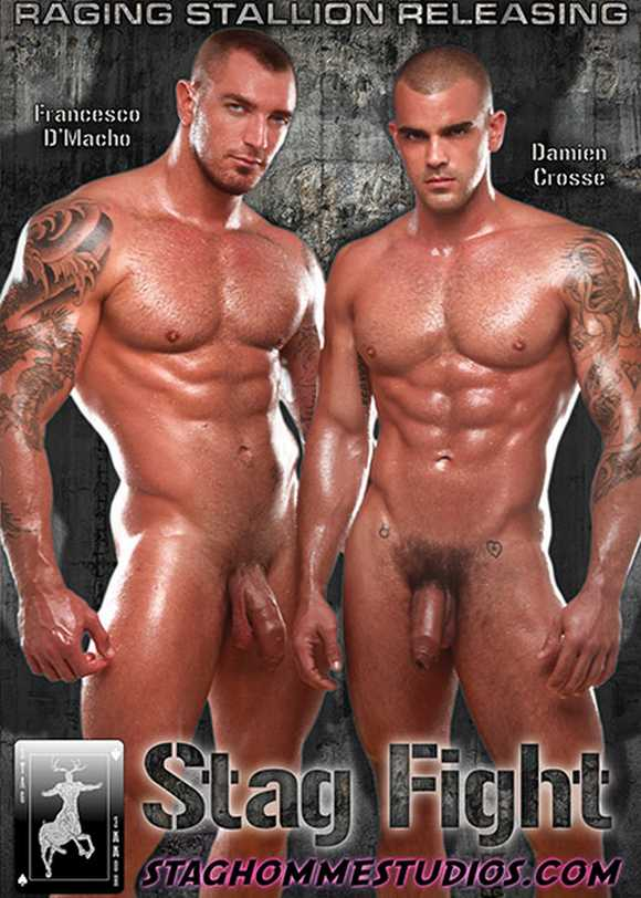 Stag Homme Studios Francesco DMacho Damien Crosse STAG FIGHT gay porn