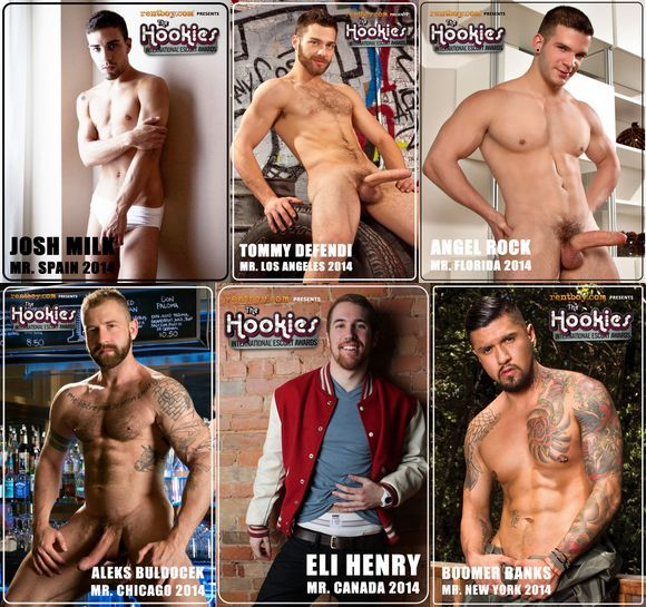 The Hookies 2014 Gay Porn Star Finalist