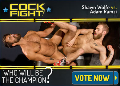 RS_390X280_15CockFight2