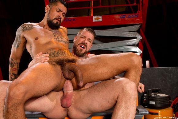 rocco gay